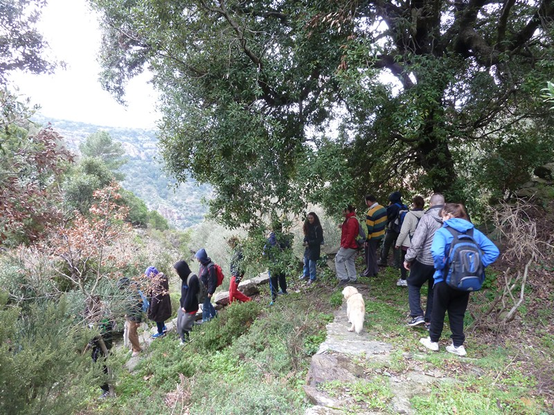 Trails & Paths in Ikaria
